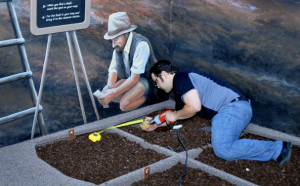 Installing the Fossil Dig Pit