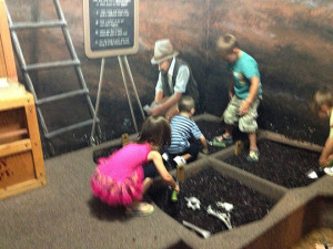 Kids on a Fossil Quest!