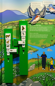 The Food Chain Interactive