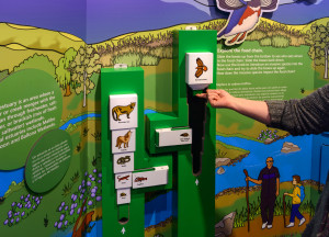Food Chain Interactive in Use