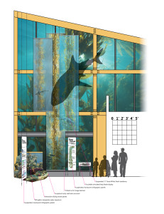 The Kelp Wall Elevation